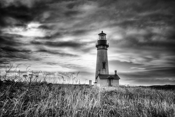 Yaquina Head Lighthouse Black and White