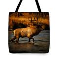 Bull Elk Tote