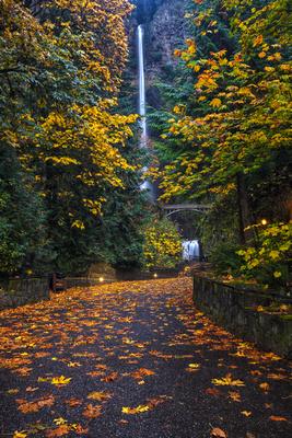 Path to Multnomah Falls