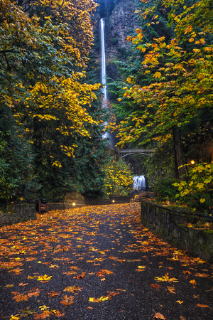 Path to Multnomah Falls